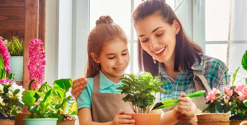 Seis dicas para tornar a sua casa ainda mais especial